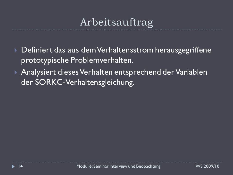 Arbeitsauftrag WS 2009/10Modul 6: Seminar Interview und Beobachtung14  Definiert das aus dem Verhaltensstrom herausgegriffene prototypische Problemve