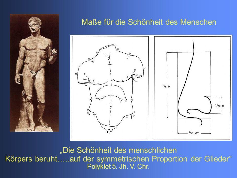"""Maße für die Schönheit des Menschen """"Die Schönheit des menschlichen Körpers beruht…..auf der symmetrischen Proportion der Glieder Polyklet 5."""