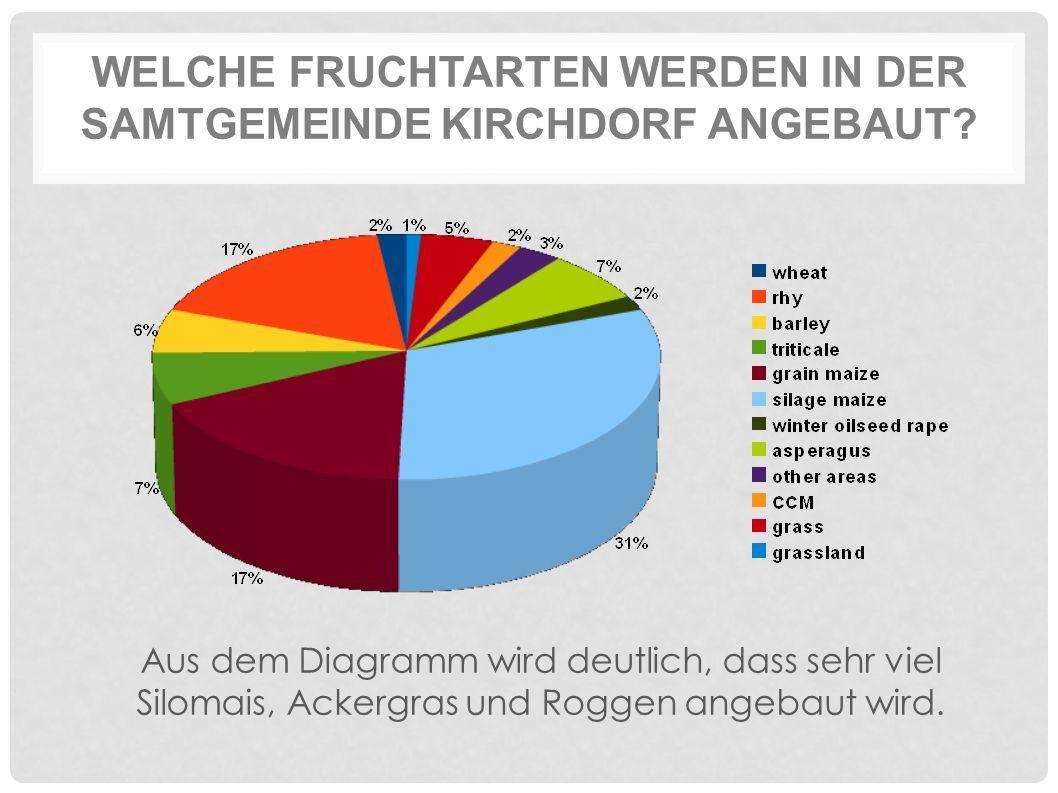 WELCHE FRUCHTARTEN WERDEN IN DER SAMTGEMEINDE KIRCHDORF ANGEBAUT? Aus dem Diagramm wird deutlich, dass sehr viel Silomais, Ackergras und Roggen angeba