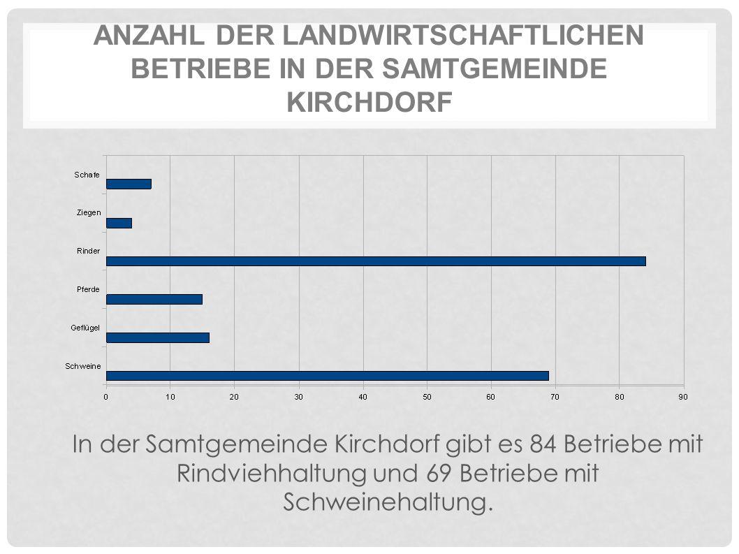ANZAHL DER LANDWIRTSCHAFTLICHEN BETRIEBE IN DER SAMTGEMEINDE KIRCHDORF In der Samtgemeinde Kirchdorf gibt es 84 Betriebe mit Rindviehhaltung und 69 Betriebe mit Schweinehaltung.