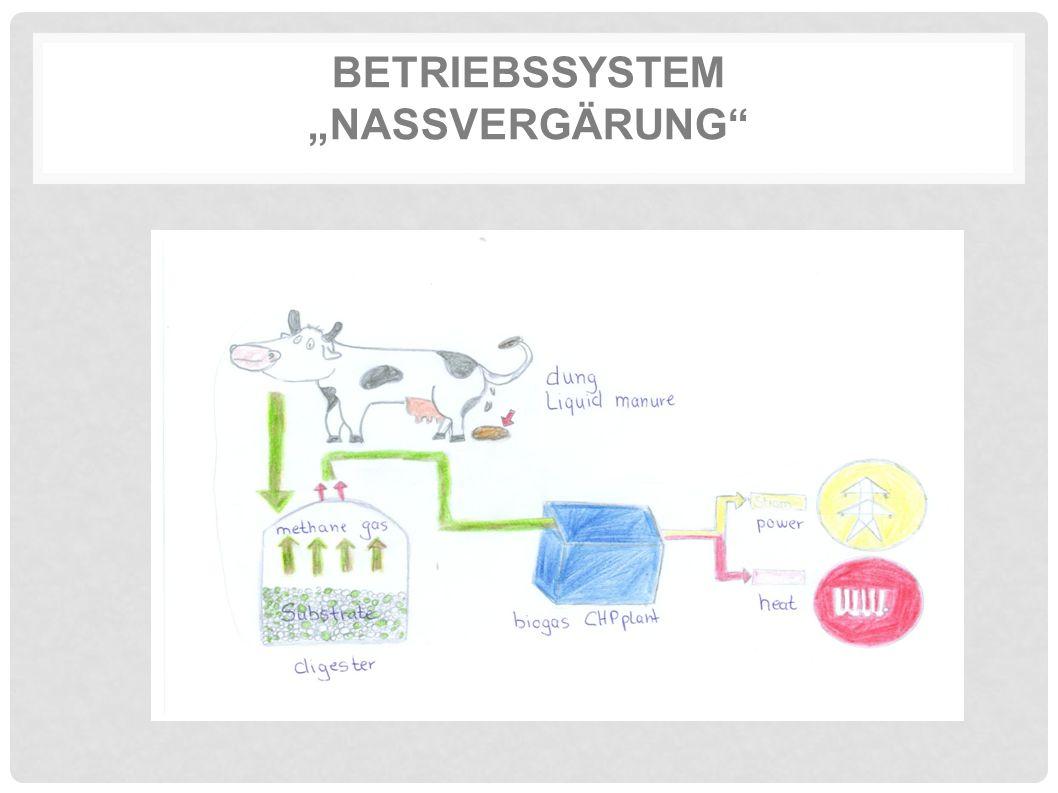 """BETRIEBSSYSTEM """"NASSVERGÄRUNG"""