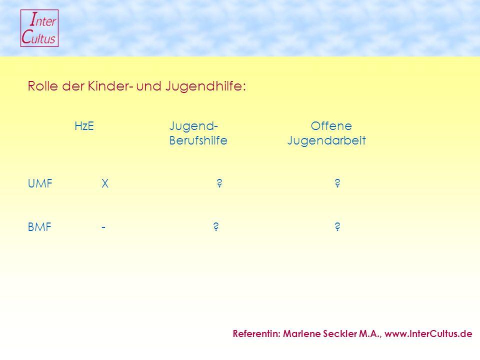 Rolle der Kinder- und Jugendhilfe: HzEJugend-Offene BerufshilfeJugendarbeit UMF X .