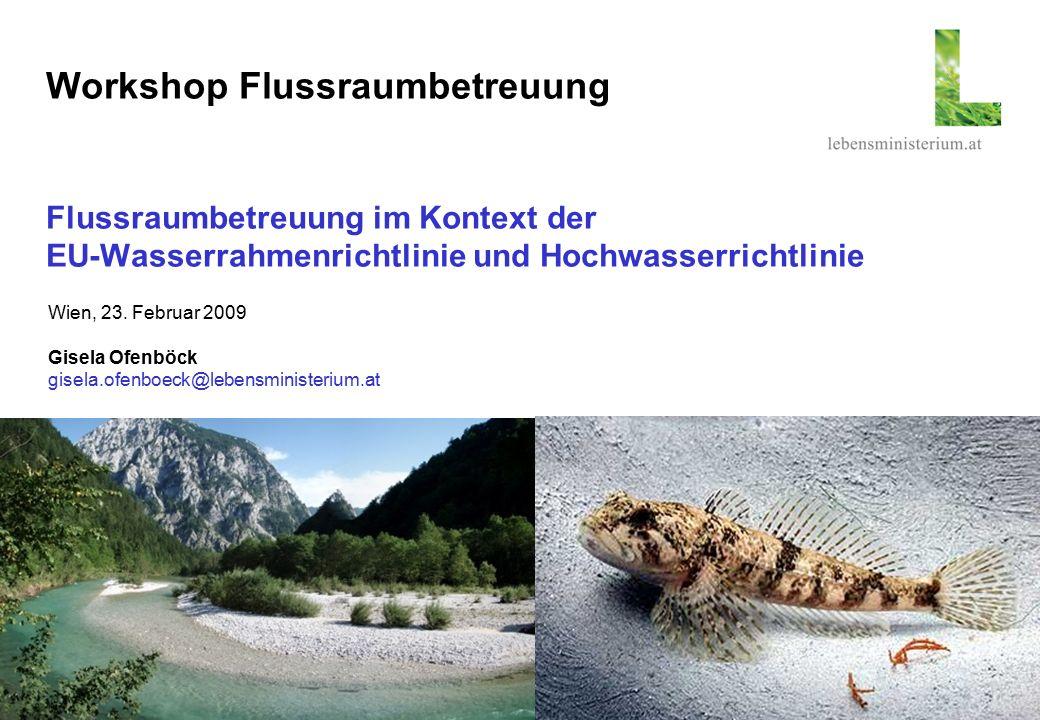 Seite 130.05.2016 Workshop Flussraumbetreuung Flussraumbetreuung im Kontext der EU-Wasserrahmenrichtlinie und Hochwasserrichtlinie Wien, 23. Februar 2