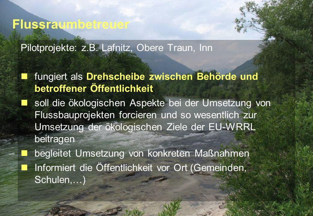 Seite 10 23.02.2010 Flussraumbetreuer Pilotprojekte: z.B. Lafnitz, Obere Traun, Inn fungiert als Drehscheibe zwischen Behörde und betroffener Öffentli