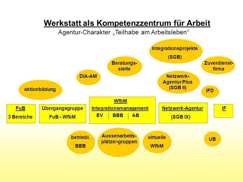 Netzwerk-Agentur (SGB IX) FuB 3 Bereiche Übergangsgruppe FuB - WfbM betriebl.