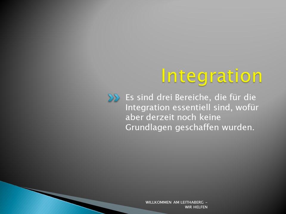 Es sind drei Bereiche, die für die Integration essentiell sind, wofür aber derzeit noch keine Grundlagen geschaffen wurden.