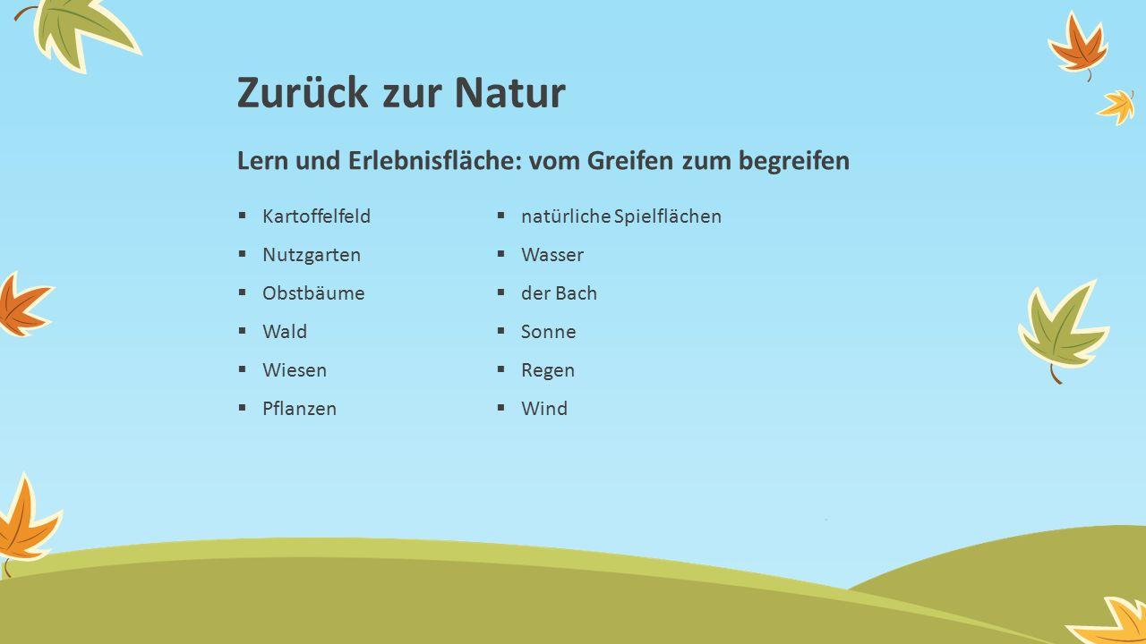 Zurück zur Natur  Kartoffelfeld  Nutzgarten  Obstbäume  Wald  Wiesen  Pflanzen  natürliche Spielflächen  Wasser  der Bach  Sonne  Regen  Wind Lern und Erlebnisfläche: vom Greifen zum begreifen