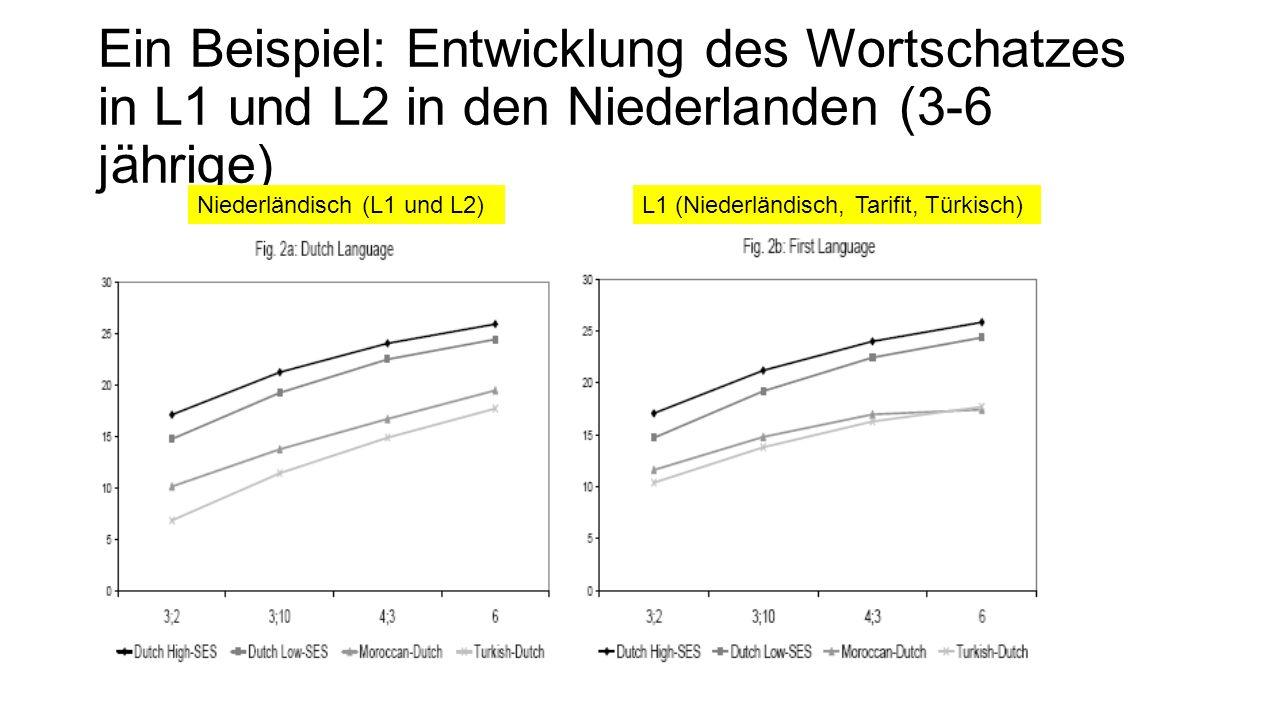 Ein Beispiel: Entwicklung des Wortschatzes in L1 und L2 in den Niederlanden (3-6 jährige) Niederländisch (L1 und L2)L1 (Niederländisch, Tarifit, Türki
