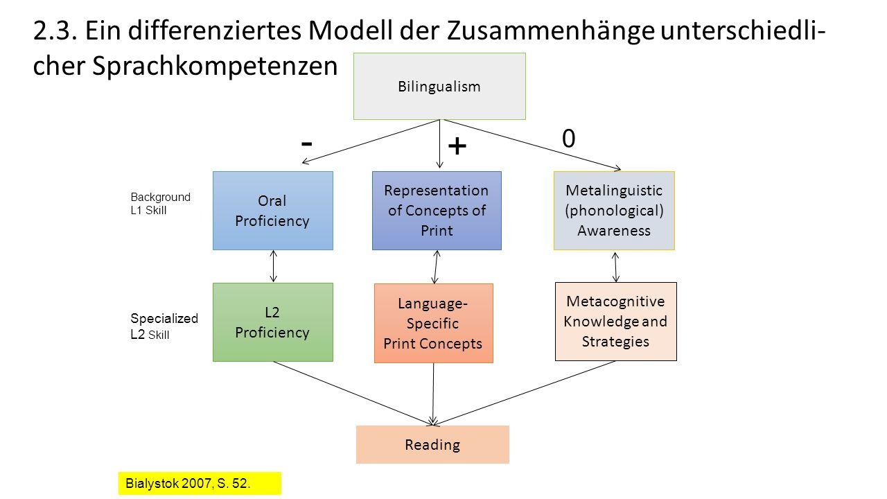 Bilingualism Representation of Concepts of Print Oral Proficiency Metalinguistic (phonological) Awareness Metacognitive Knowledge and Strategies Language- Specific Print Concepts L2 Proficiency Reading Background L1 Skill Specialized L2 Skill - + 0 Bialystok 2007, S.
