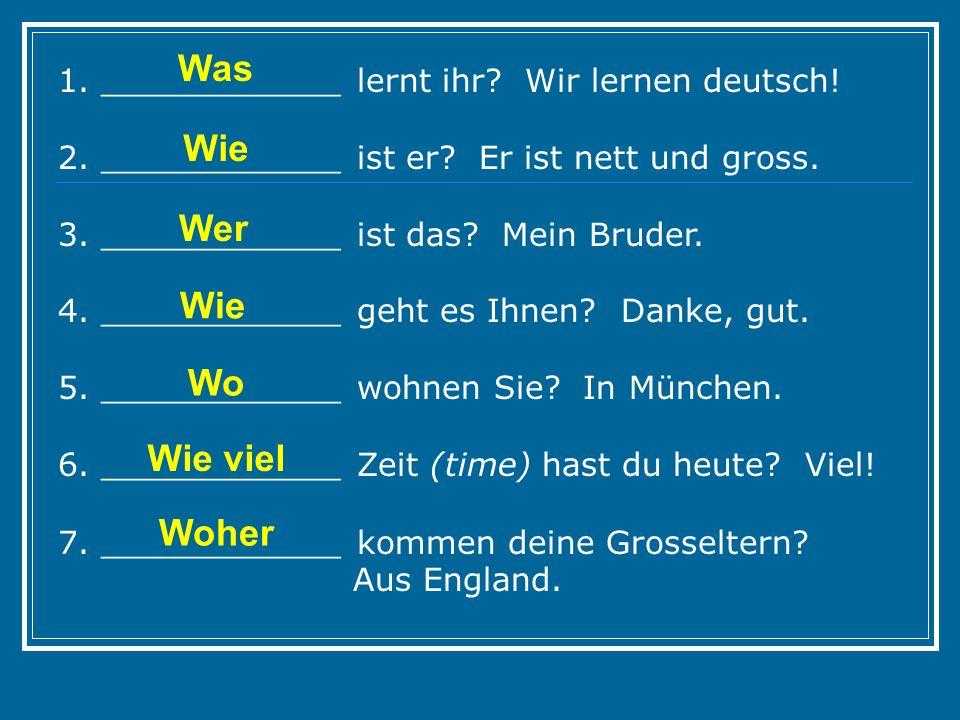 1. ____________ lernt ihr? Wir lernen deutsch! 2. ____________ ist er? Er ist nett und gross. 3. ____________ ist das? Mein Bruder. 4. ____________ ge