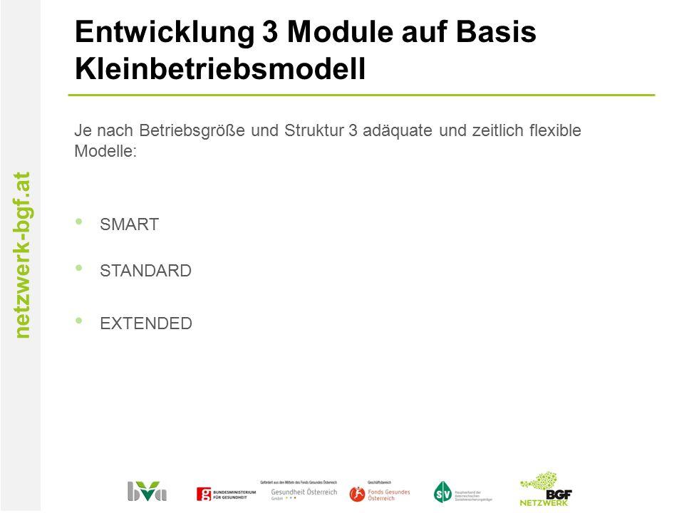 netzwerk-bgf.at Entwicklung 3 Module auf Basis Kleinbetriebsmodell Je nach Betriebsgröße und Struktur 3 adäquate und zeitlich flexible Modelle: SMART STANDARD EXTENDED