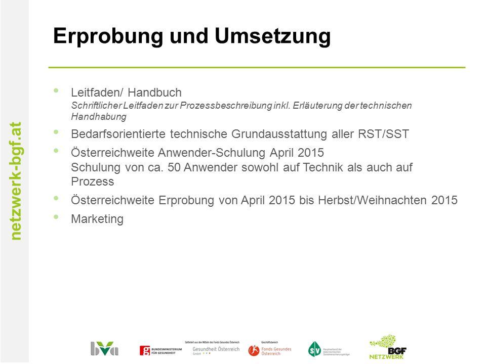 netzwerk-bgf.at Erprobung und Umsetzung Leitfaden/ Handbuch Schriftlicher Leitfaden zur Prozessbeschreibung inkl.