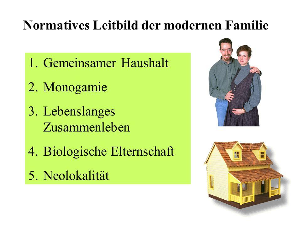 Veränderung der Familie 1 Abnahme der Anzahl der Eheschließungen Mehr nicht-eheliche Lebensgemeinschaften Mehr Ein-Eltern-Familien Mehr Stieffamilien Mehr nicht-eheliche Geburten (in Schweden 50 %)