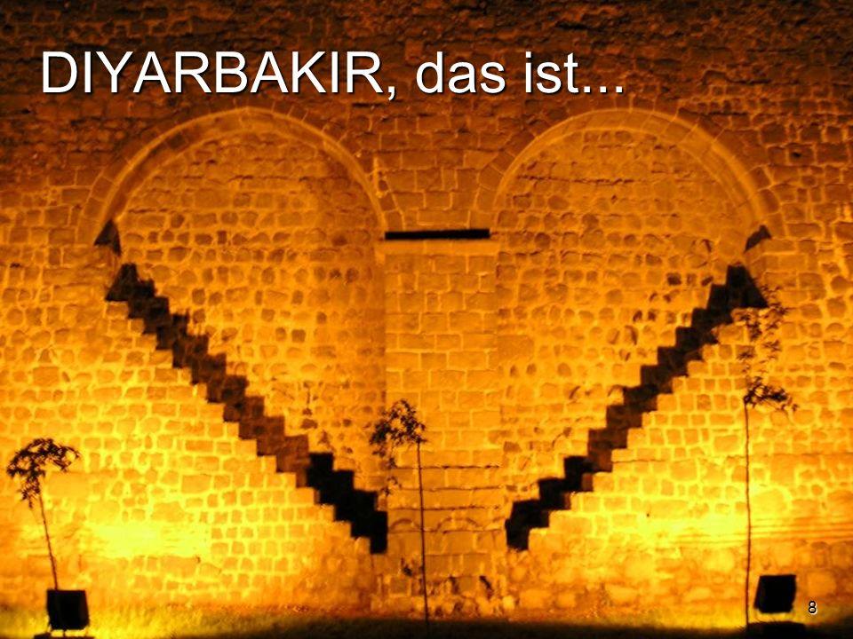 29 Den Start von SOHRAM ermöglichten mit finanzieller Unterstützung: ACAT-Schweiz Aktion der Christen für die Abschaffung der Folter die Schweizerbotschaft in Ankara die Stiftung France Libertés von Danielle Mitterrand