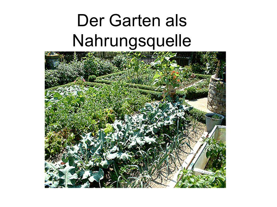 Der Garten als Nahrungsquelle