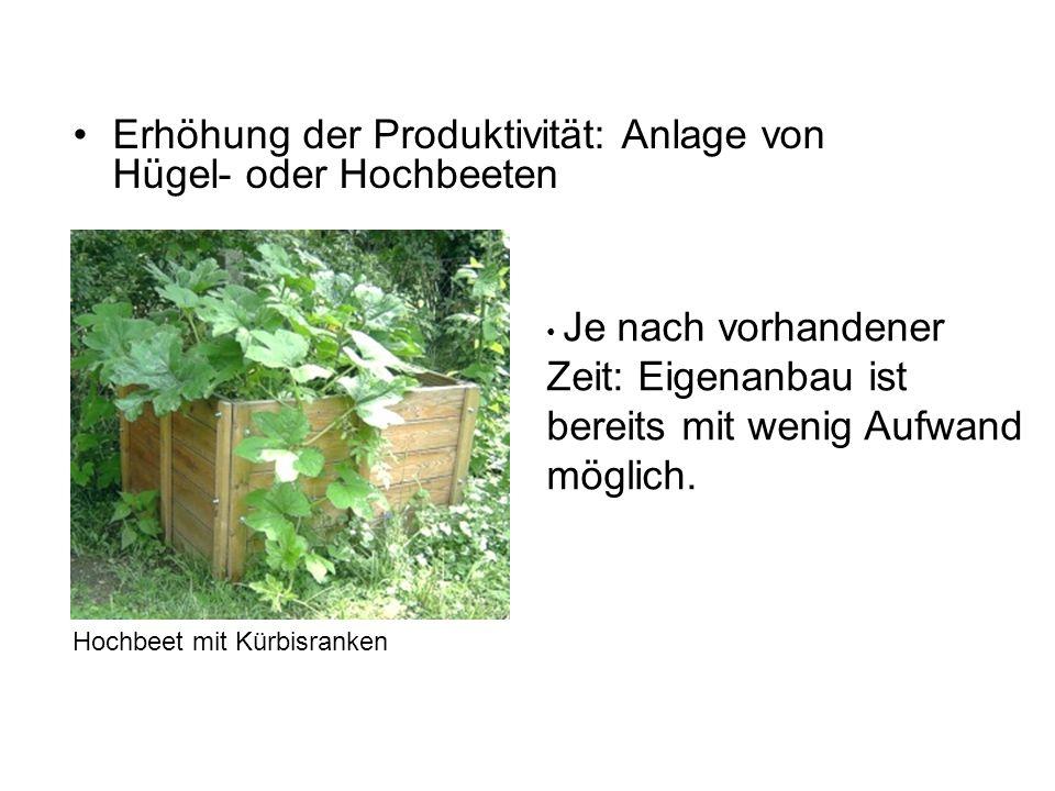 Erhöhung der Produktivität: Anlage von Hügel- oder Hochbeeten Je nach vorhandener Zeit: Eigenanbau ist bereits mit wenig Aufwand möglich.