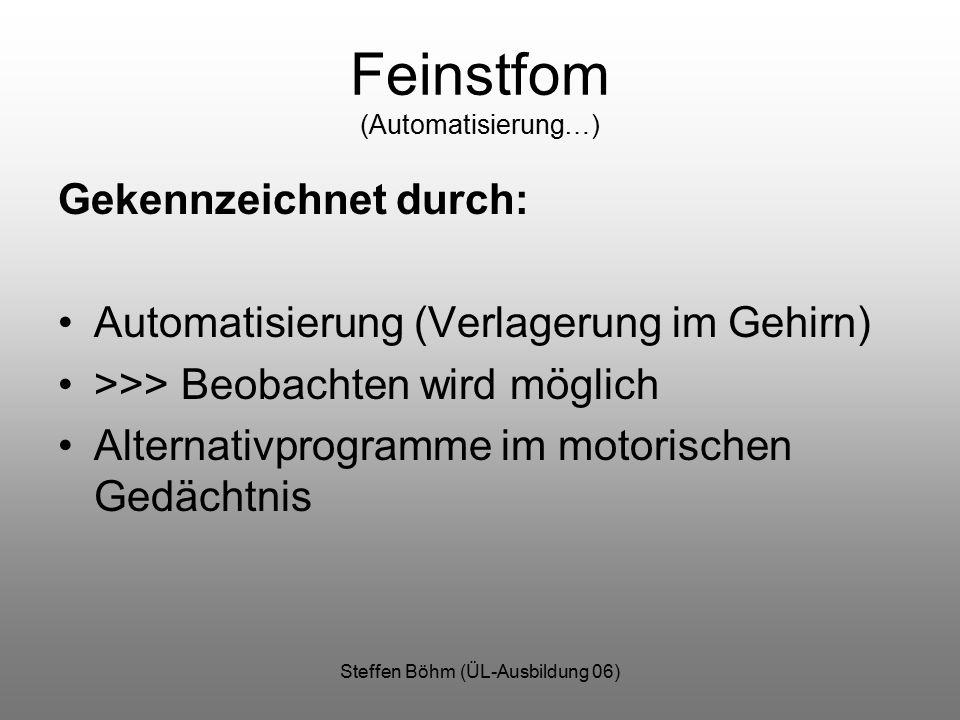 Steffen Böhm (ÜL-Ausbildung 06) Feinstfom (Automatisierung…) Gekennzeichnet durch: Automatisierung (Verlagerung im Gehirn) >>> Beobachten wird möglich Alternativprogramme im motorischen Gedächtnis