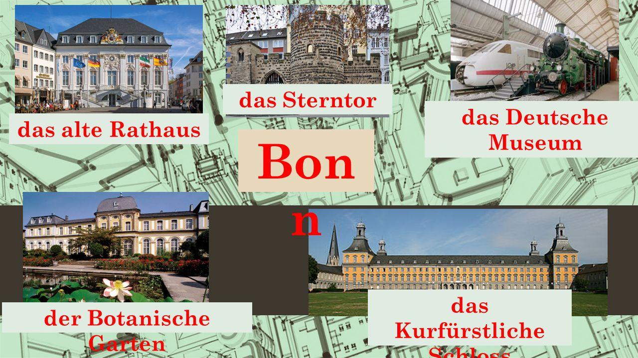 das Kurfürstliche Schloss das alte Rathaus das Deutsche Museum der Botanische Garten das Sterntor Bon n