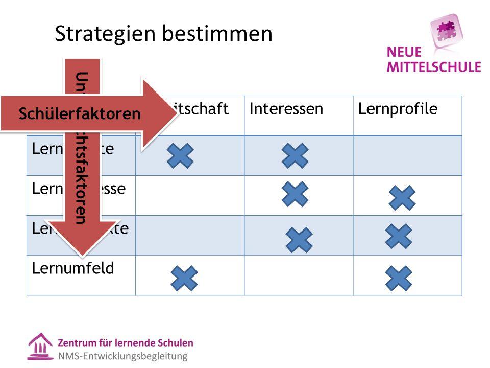 Strategien bestimmen BereitschaftInteressenLernprofile Lerninhalte Lernprozesse Lernprodukte Lernumfeld Unterrichtsfaktoren Schülerfaktoren