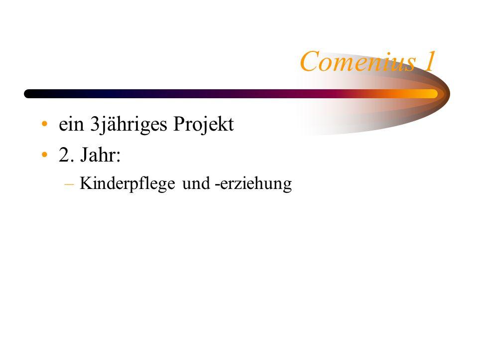 Comenius 1 ein 3jähriges Projekt 2. Jahr: –Kinderpflege und -erziehung