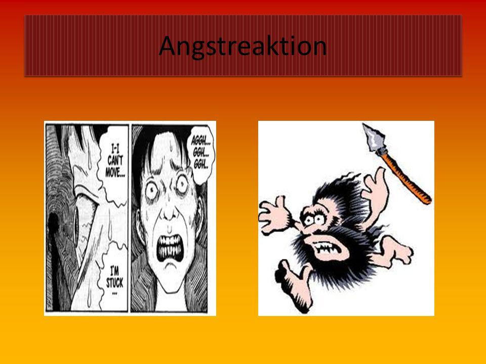 Gefahren  A = Angstreaktion  A = Atemgifte  A = Ausbreitung  A = Atomare Gefahren  C = Chemische Stoffe  E = Explosion  E = Einsturz  E = Elek