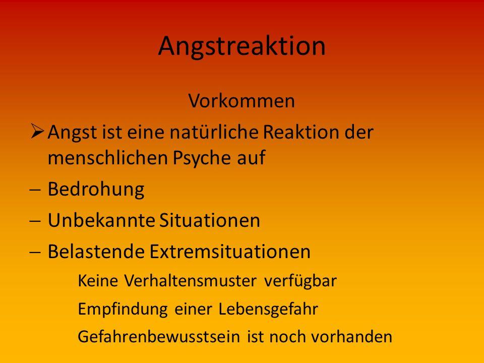 Angstreaktion Schutz  Verhalten bei Erkennen von Angstanzeichen an sich und anderen Kameraden  Pausen einlegen ggf.