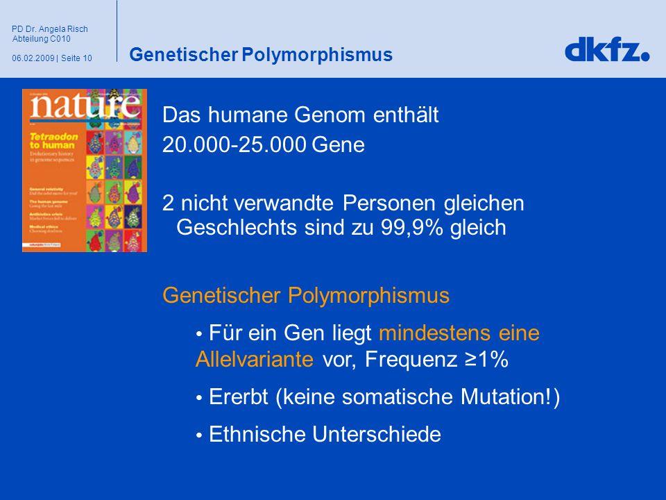 Seite 1006.02.2009 | PD Dr. Angela Risch Abteilung C010 Genetischer Polymorphismus Das humane Genom enthält 20.000-25.000 Gene 2 nicht verwandte Perso