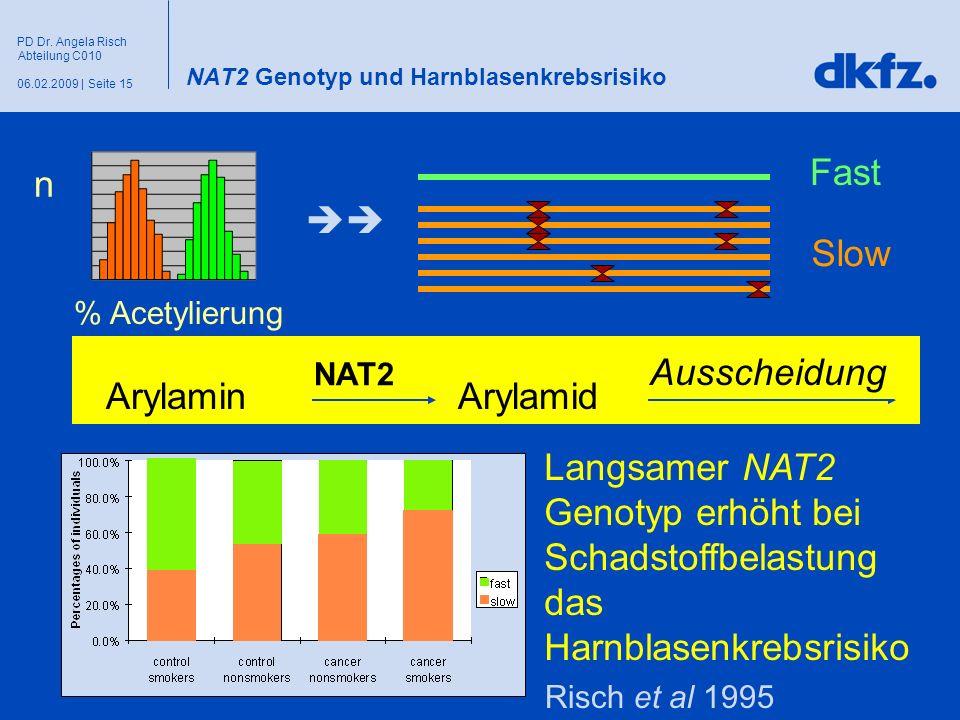 Seite 1506.02.2009 | PD Dr. Angela Risch Abteilung C010 NAT2 Genotyp und Harnblasenkrebsrisiko n % Acetylierung ArylaminArylamid NAT2 Ausscheidung Fas