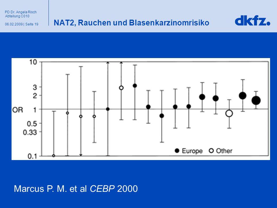 Seite 1906.02.2009 | PD Dr. Angela Risch Abteilung C010 NAT2, Rauchen und Blasenkarzinomrisiko Marcus P. M. et al CEBP 2000