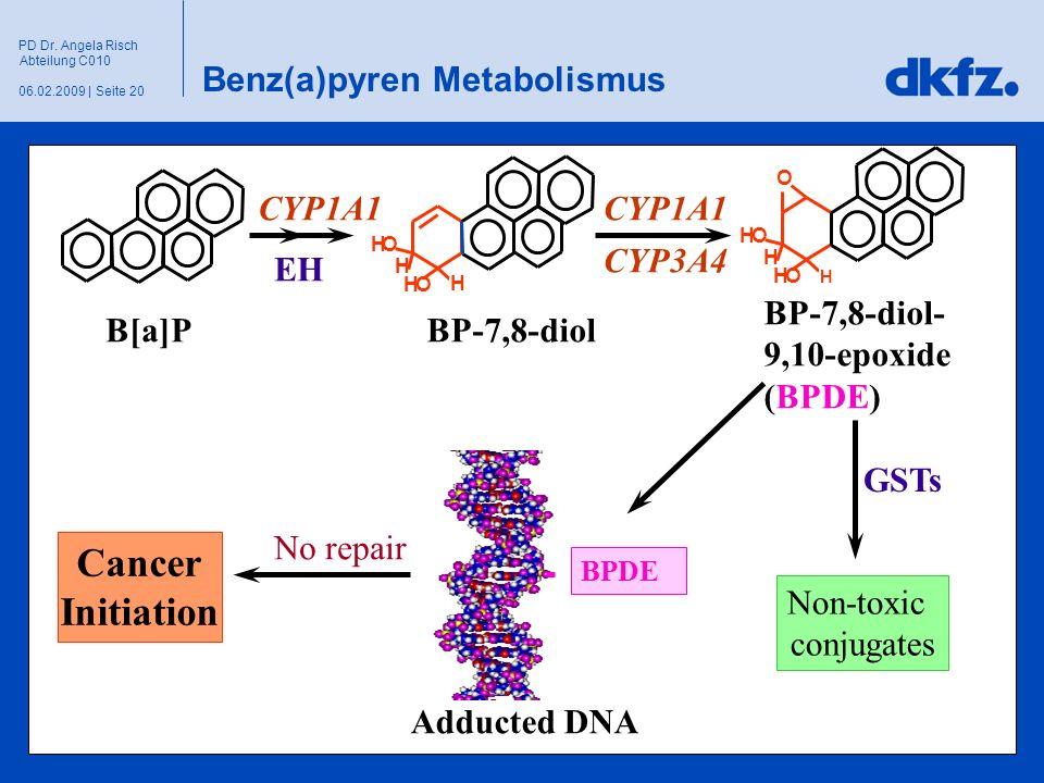 Seite 2006.02.2009 | PD Dr. Angela Risch Abteilung C010 O H H HO HO H H HO HO CYP1A1 EH CYP1A1 CYP3A4 B[a]PBP-7,8-diol BP-7,8-diol- 9,10-epoxide (BPDE