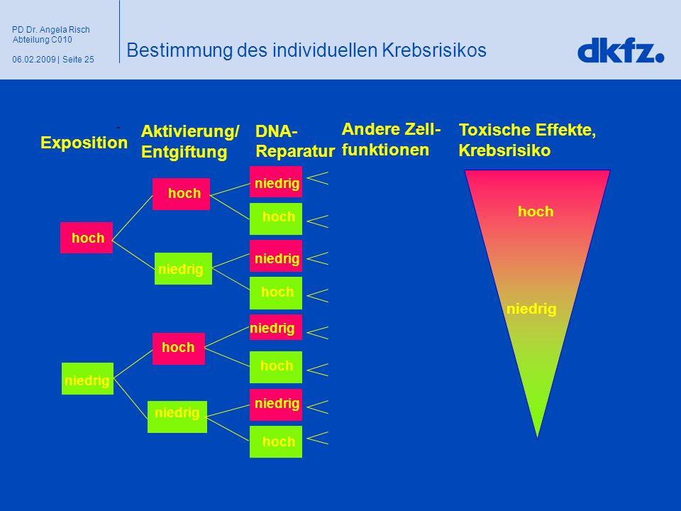 Seite 2506.02.2009 | PD Dr. Angela Risch Abteilung C010 Toxische Effekte, Krebsrisiko niedrig hoch niedrig Exposition - Aktivierung/ Entgiftung DNA- R