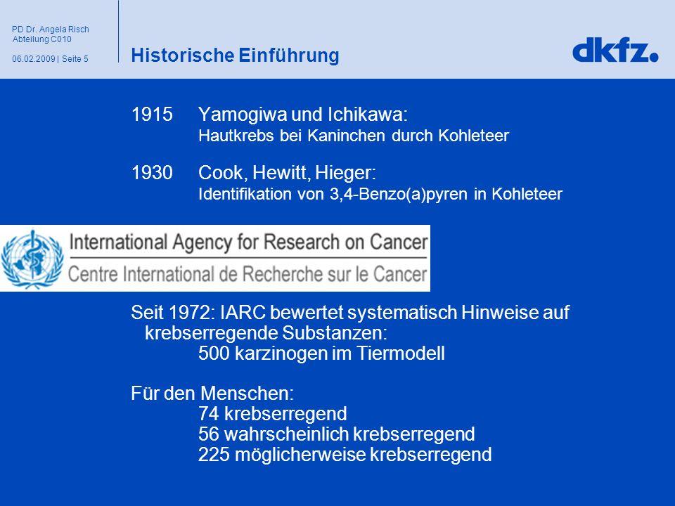 Seite 506.02.2009 | PD Dr. Angela Risch Abteilung C010 Historische Einführung 1915 Yamogiwa und Ichikawa: Hautkrebs bei Kaninchen durch Kohleteer 1930