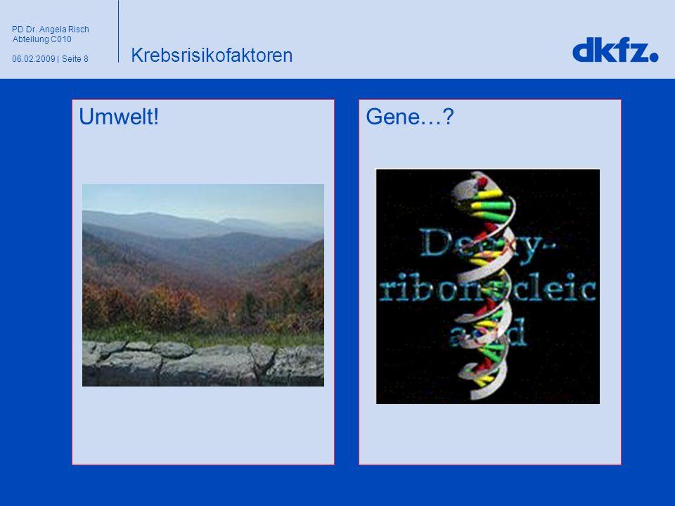 Seite 806.02.2009 | PD Dr. Angela Risch Abteilung C010 Krebsrisikofaktoren Gene…?Umwelt!