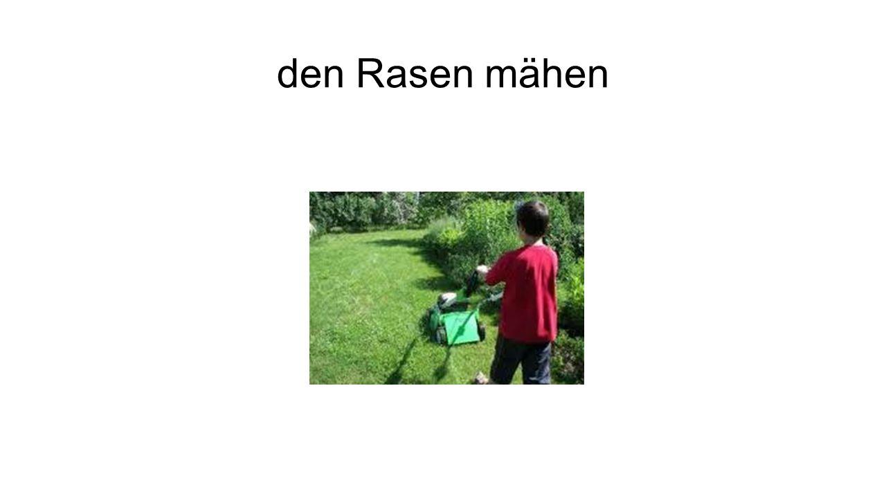 den Rasen mähen