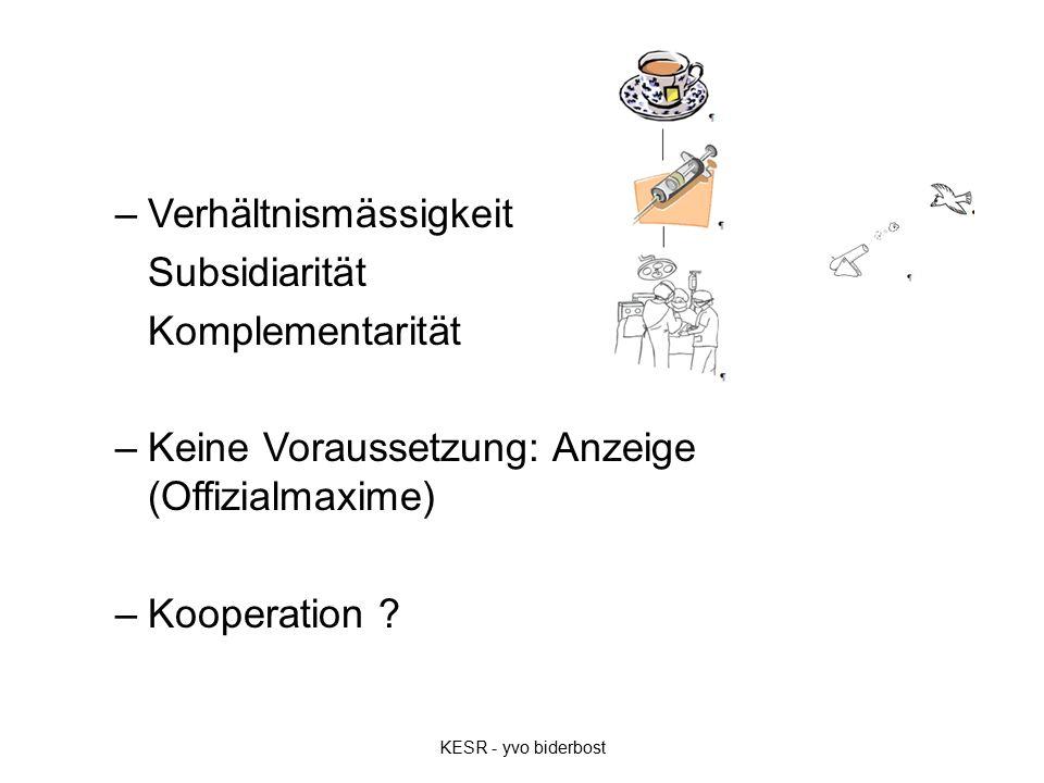 –Verhältnismässigkeit Subsidiarität Komplementarität –Keine Voraussetzung: Anzeige (Offizialmaxime) –Kooperation .