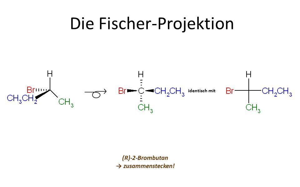 Die Fischer-Projektion (R)-2-Brombutan → zusammenstecken! identisch mit