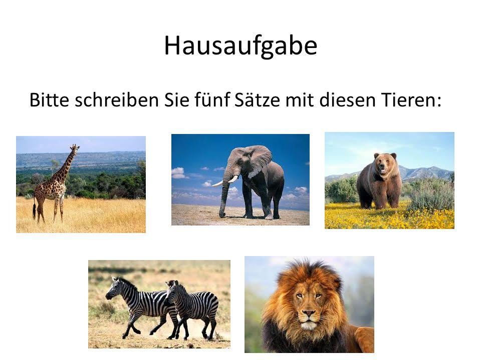 Hausaufgabe Bitte schreiben Sie fünf Sätze mit diesen Tieren: