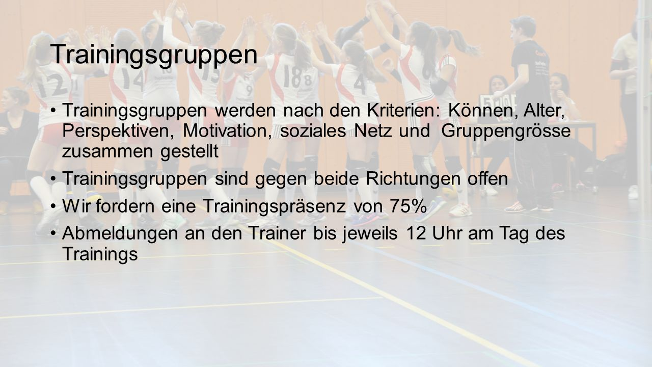 Trainingsgruppen Trainingsgruppen werden nach den Kriterien: Können, Alter, Perspektiven, Motivation, soziales Netz und Gruppengrösse zusammen gestell