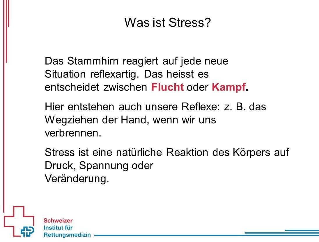 Was ist Stress. Das Stammhirn reagiert auf jede neue Situation reflexartig.