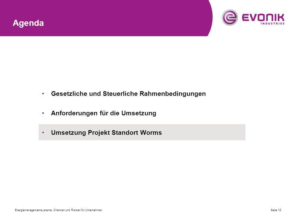 Agenda Gesetzliche und Steuerliche Rahmenbedingungen Anforderungen für die Umsetzung Umsetzung Projekt Standort Worms Seite 12Energiemanagementsysteme; Chancen und Risiken für Unternehmen