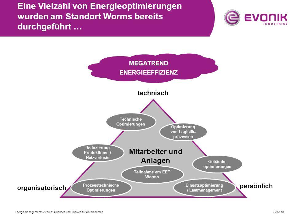 Seite 13 MEGATREND ENERGIEEFFIZIENZ Mitarbeiter und Anlagen technisch persönlich organisatorisch Einsatzoptimierung / Lastmanagement Reduzierung Produ