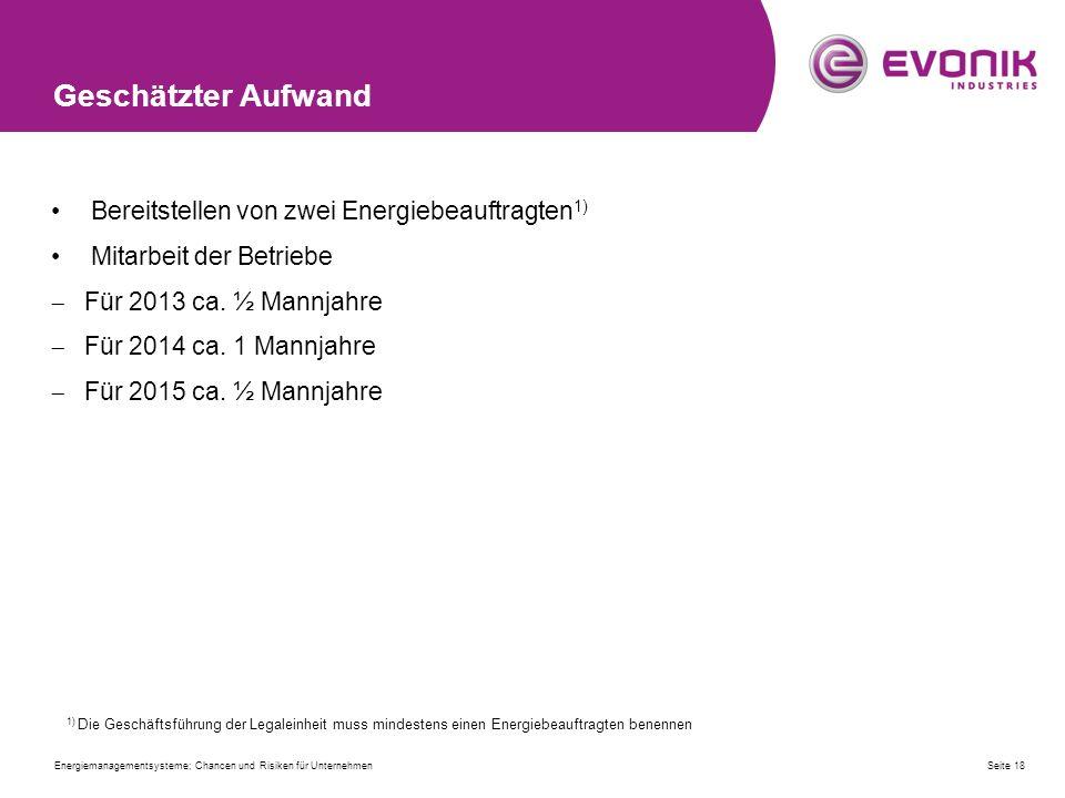 Geschätzter Aufwand Bereitstellen von zwei Energiebeauftragten 1) Mitarbeit der Betriebe  Für 2013 ca.