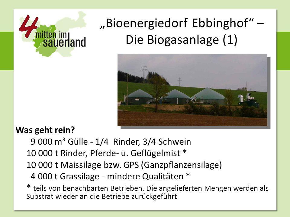 """""""Bioenergiedorf Ebbinghof"""" – Die Biogasanlage (1) Was geht rein? 9 000 m³ Gülle - 1/4 Rinder, 3/4 Schwein 10 000 t Rinder, Pferde- u. Geflügelmist * 1"""