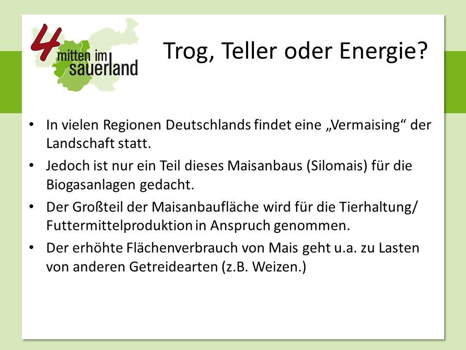 """Trog, Teller oder Energie? In vielen Regionen Deutschlands findet eine """"Vermaising"""" der Landschaft statt. Jedoch ist nur ein Teil dieses Maisanbaus (S"""