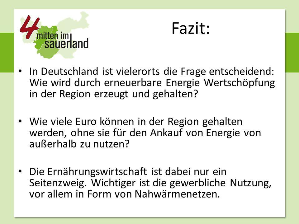 Fazit: In Deutschland ist vielerorts die Frage entscheidend: Wie wird durch erneuerbare Energie Wertschöpfung in der Region erzeugt und gehalten.