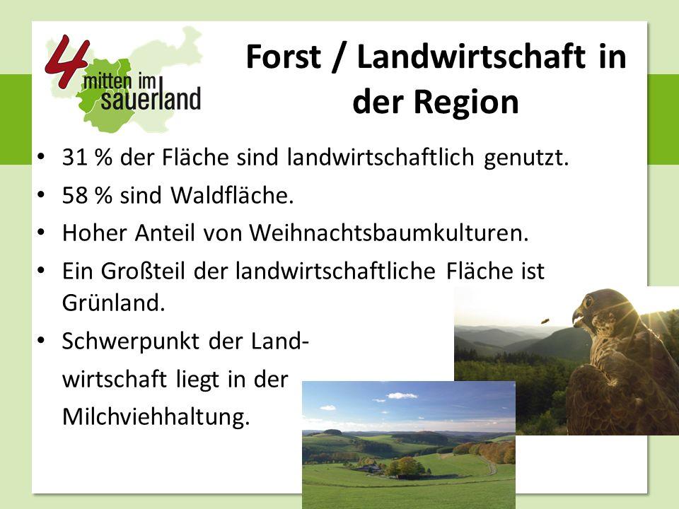 Forst / Landwirtschaft in der Region 31 % der Fläche sind landwirtschaftlich genutzt. 58 % sind Waldfläche. Hoher Anteil von Weihnachtsbaumkulturen. E