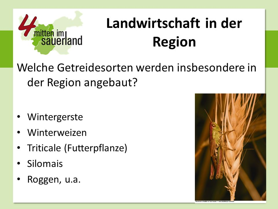 Landwirtschaft in der Region Welche Getreidesorten werden insbesondere in der Region angebaut? Wintergerste Winterweizen Triticale (Futterpflanze) Sil