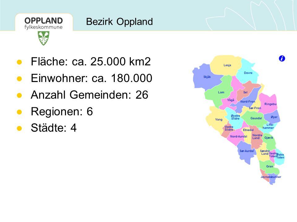 Bezirk Oppland ●Fläche: ca. 25.000 km2 ●Einwohner: ca. 180.000 ●Anzahl Gemeinden: 26 ●Regionen: 6 ●Städte: 4
