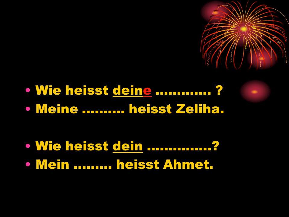 Wie heisst deine …………. ? Meine ………. heisst Zeliha. Wie heisst dein ……………? Mein ……… heisst Ahmet.