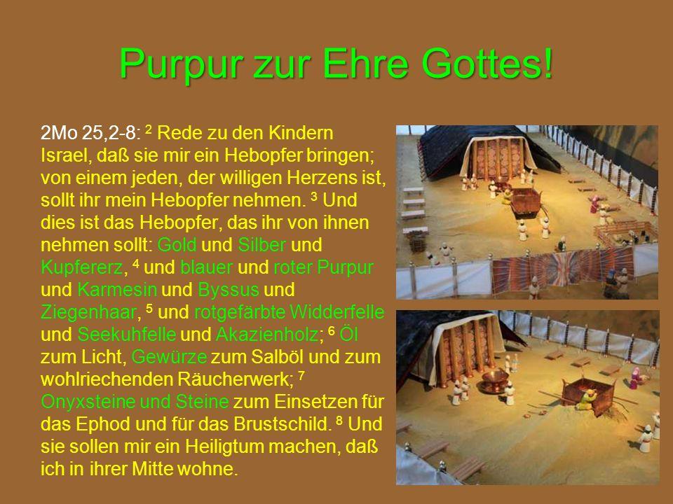 Purpur zur Ehre Gottes! 2Mo 25,2-8: 2 Rede zu den Kindern Israel, daß sie mir ein Hebopfer bringen; von einem jeden, der willigen Herzens ist, sollt i